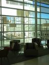 Madison Public Library Windows