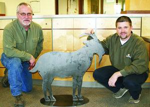 Community Goat Art Ross Kuehn